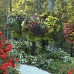 Container Gardens South Florida