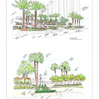 Landscape Architecture Palm Beach County