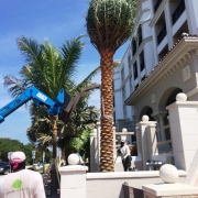 Landscape Construction Palm Beach County