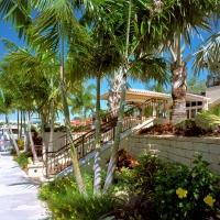 Landscape Design Palm Beach County