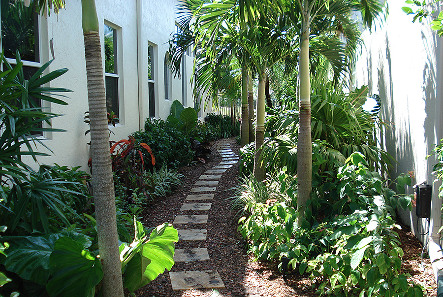 Residential gallery botanical visions florida for Florida landscape design
