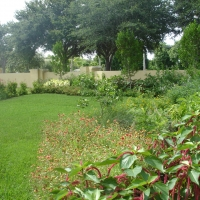 Specialty Gardens South Florida