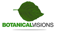 Botanical Visions – Florida Landscape Design Excellence