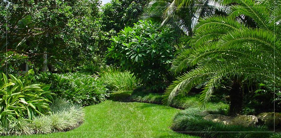 Botanical Visions Florida Landscape Design Excellence