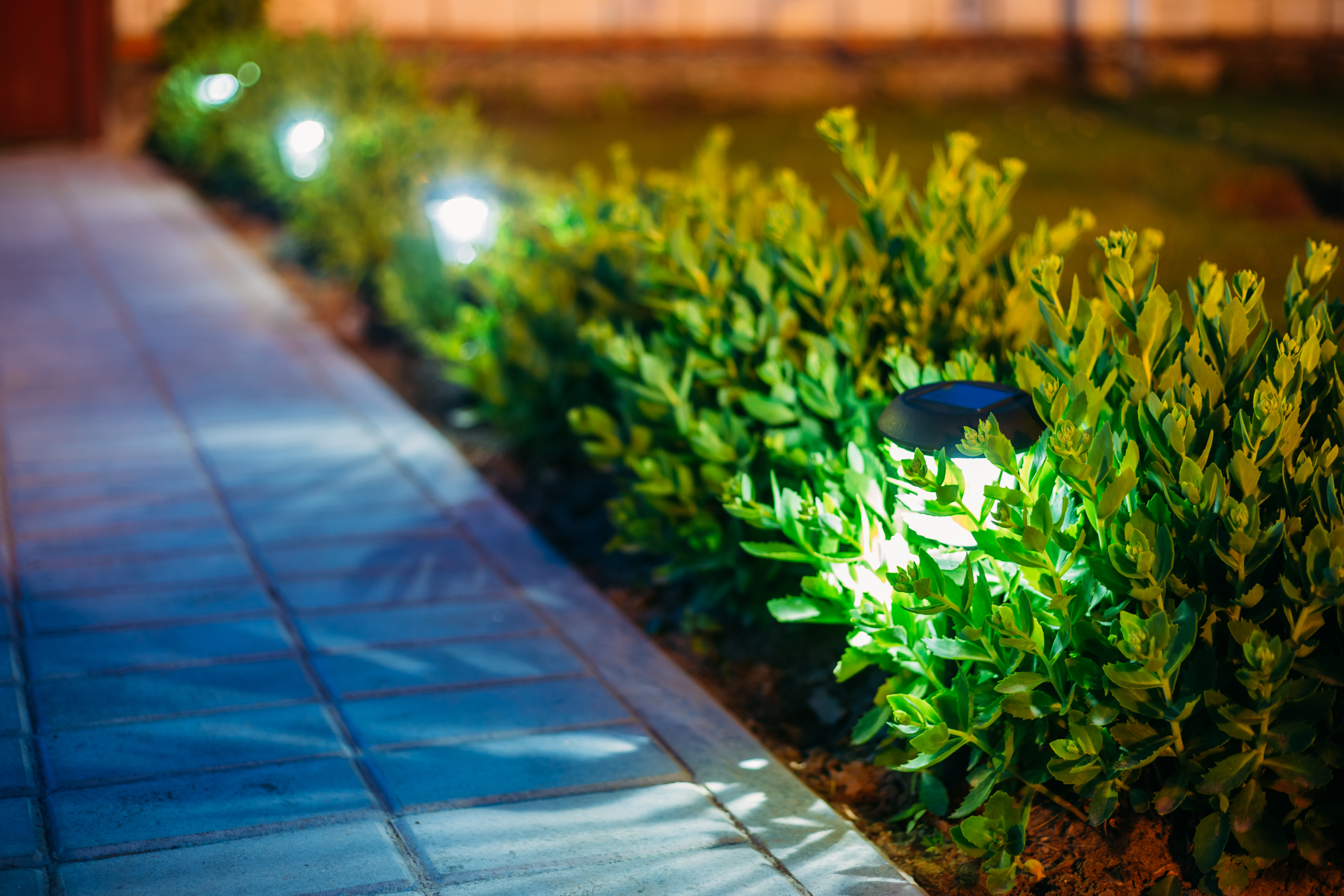 Landscape Lighting Boca Raton and South Florida