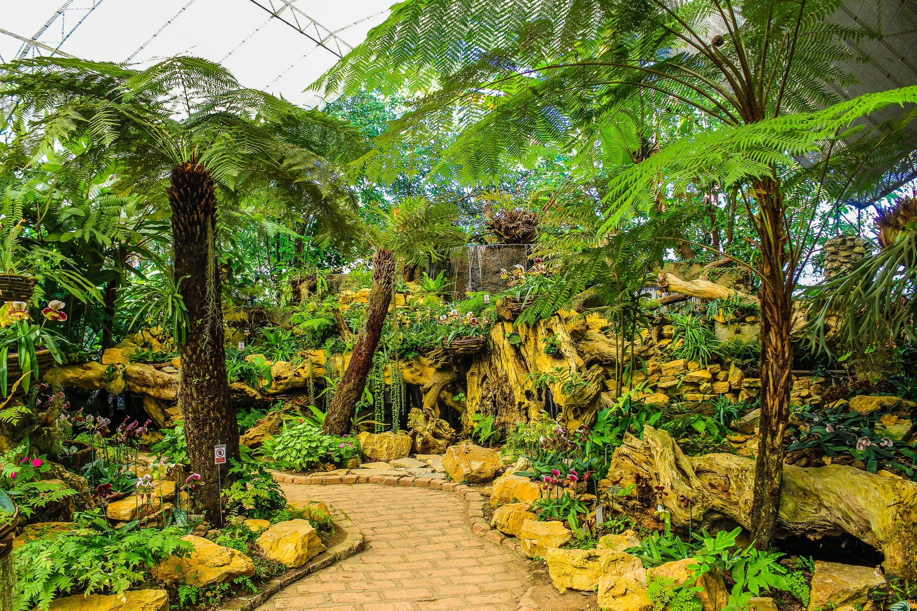 Botanical vision Garden South Florida